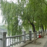 Jiangxi Nanchang Parc Bayi 7