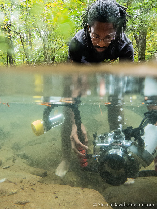 An EMU Conservation Photography student practices underwater techniques