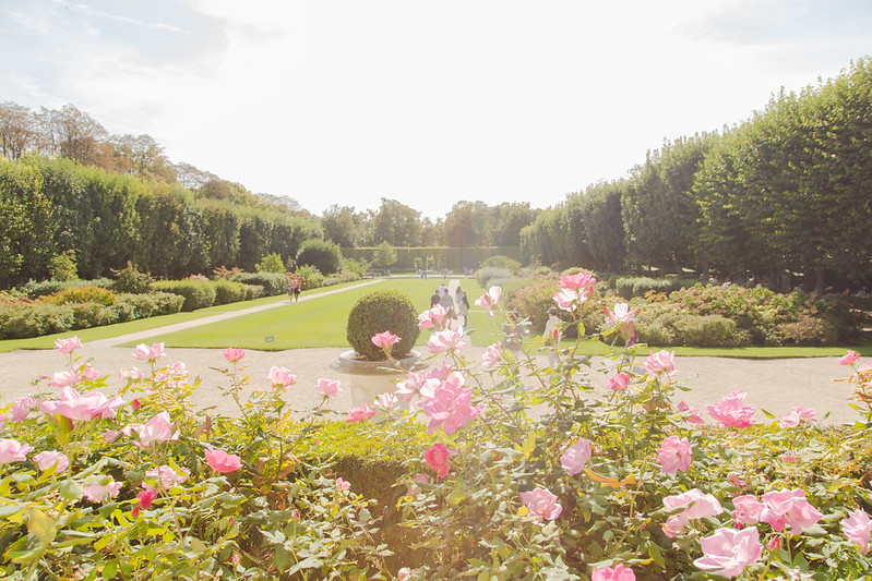 The Gardens at Musée Rodin | Elsa Brobbey