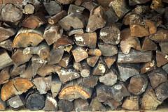 Lots of logs