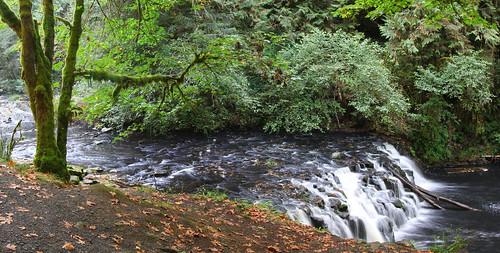 panorama nature water oregon creek forest waterfall littlefalls falls beavercreek