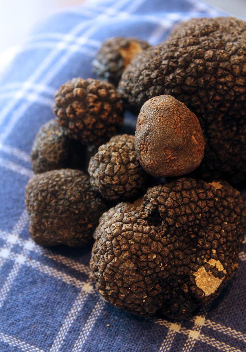 San Miniato Tuscany black truffles