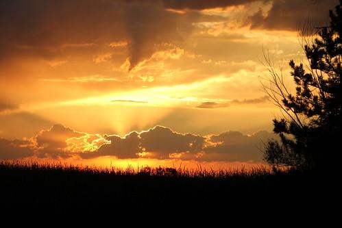 sun clouds sunrise corn nebraska ne sunbeam