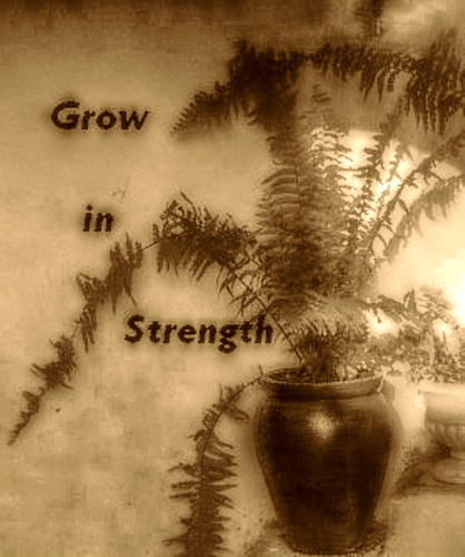 Grow in strength
