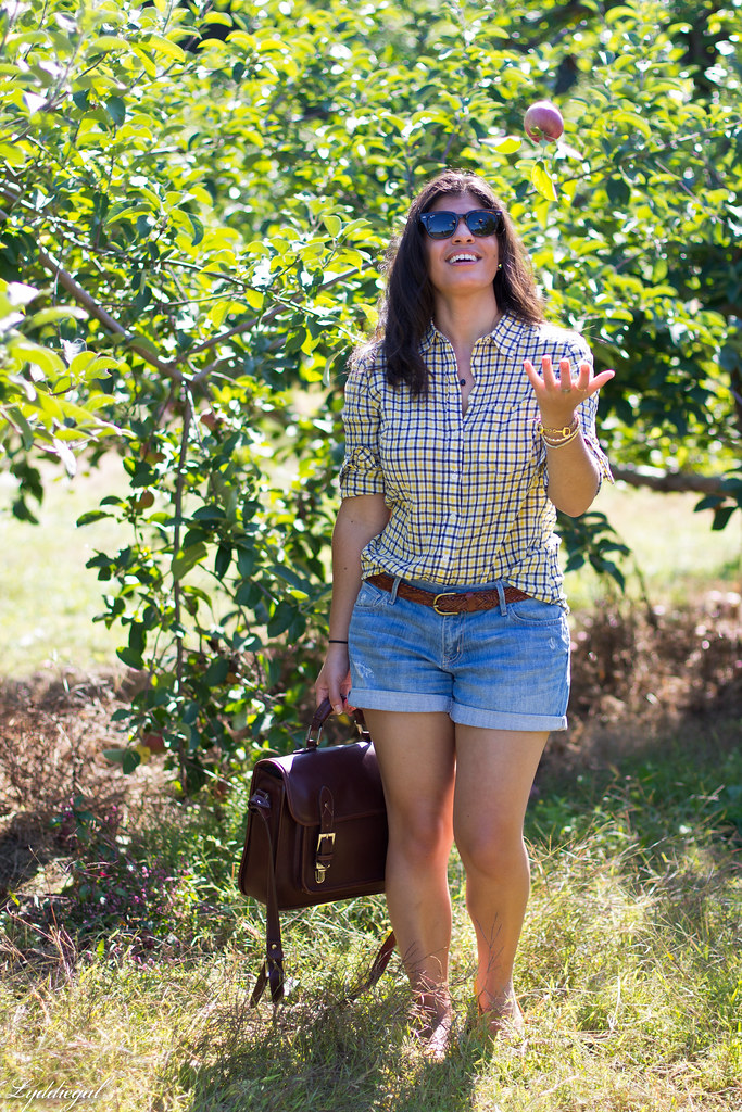 plaid shirt and denim shorts for apple picking-5.jpg