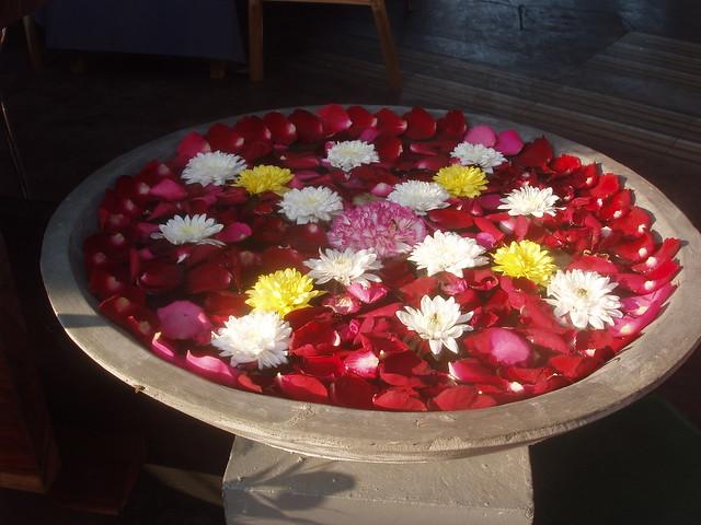 201402100159-floating-flowers