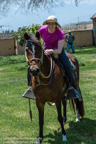 horses peru other ica pisco siobhanhughes