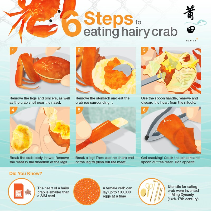 Putien's Guide to Eating Hairy Crab
