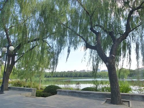 Beijing-Parc Longtan (1)