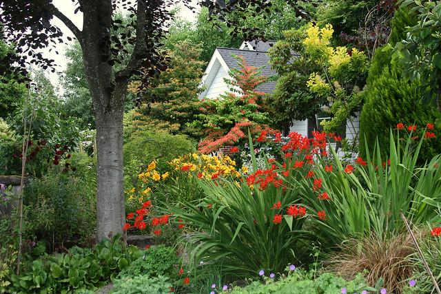 14_house_garden