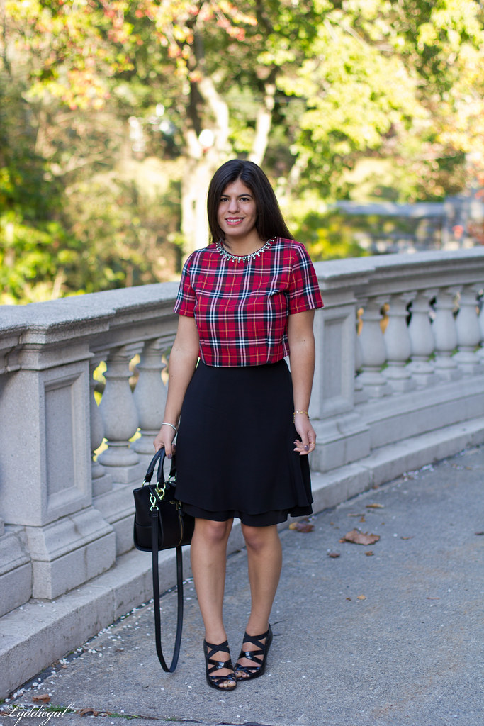 plaid crop top, black silk skirt-1.jpg