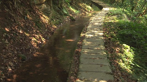 早年巡水步道成為郊山小徑