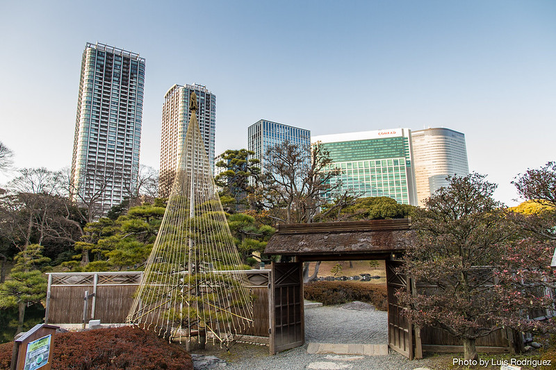 Hama-Rikyu Gardens-76