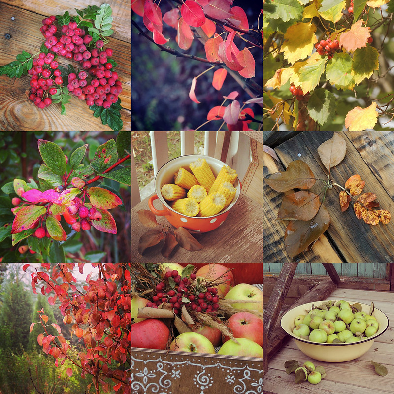 fall mosaique