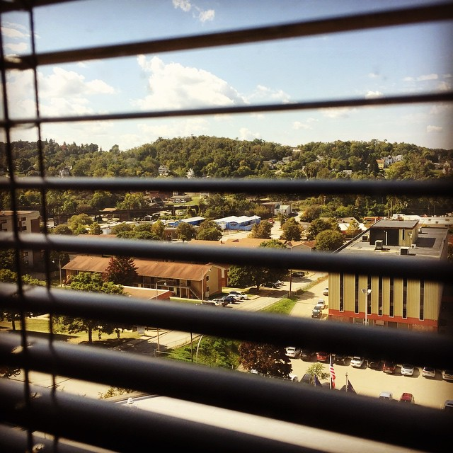 not a bad view. my office actually has 3x the windows that my entire previous department did.