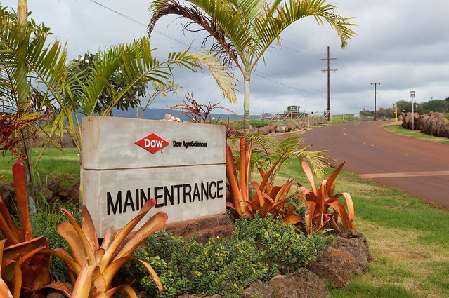 Entrance to Dow's fields in Kauai
