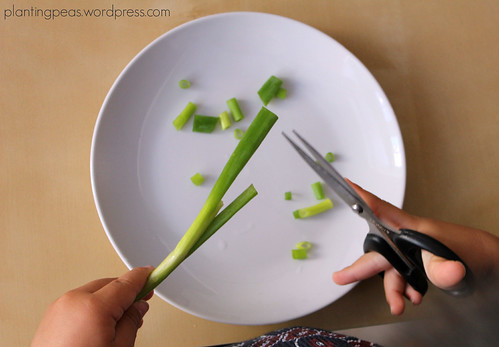 cutting scallions 2