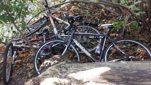 Bikes (Stolen?)
