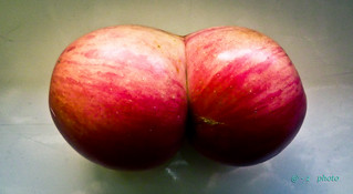 The combined apples.