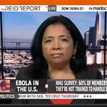 Bonnie Castillo Appears on The Joy Reid Show