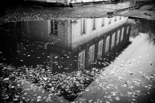 House and its puddle (b&w version)
