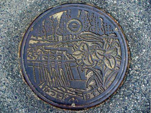 Katsuta Okayama, manhole cover (岡山県勝田町のマンホール)