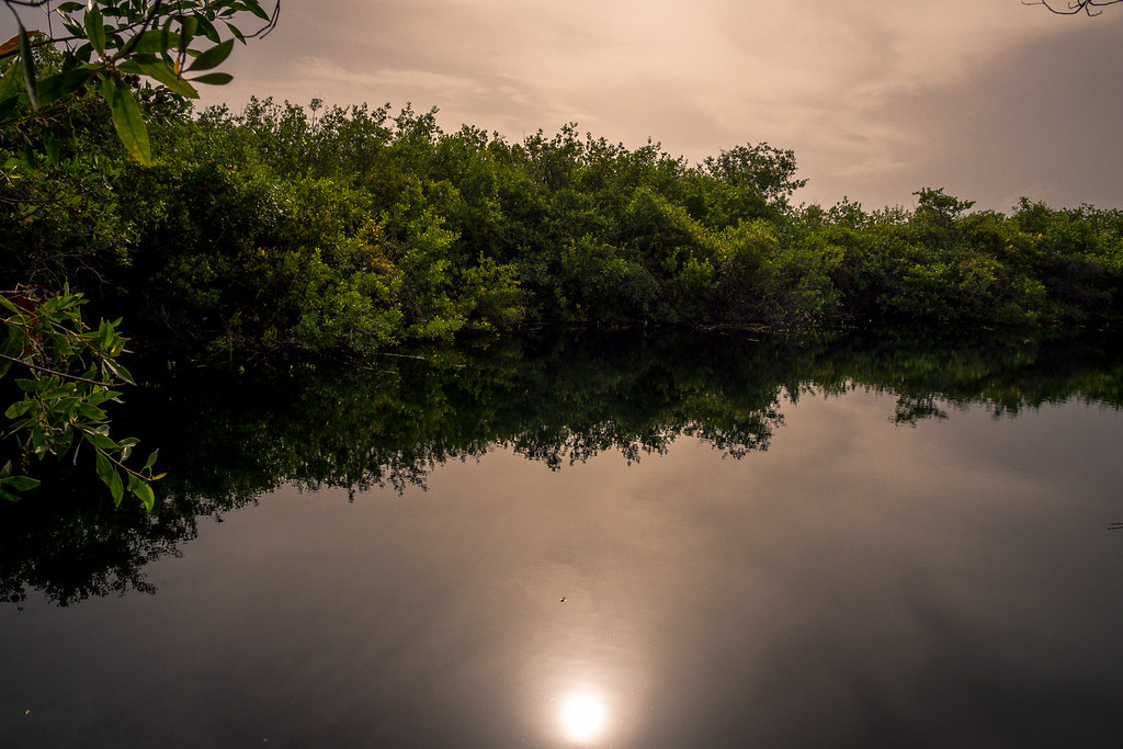 Tulum CESIAK org national park cenote