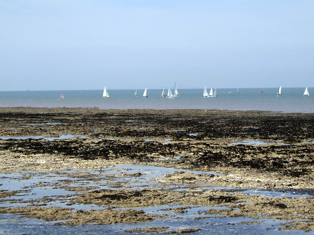 The coast at Birchington-on-Sea