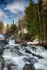 Rocky Mountain Spring by Jim Crotty