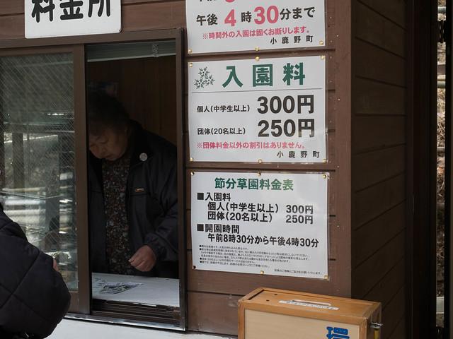 20170312-四阿屋山-0073.jpg