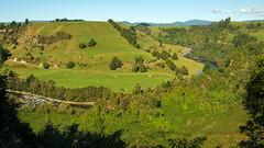 Piriaka Lookout over the Whanganui River