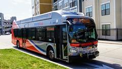 WMATA Metrobus 2016 New Flyer Xcelsior XN40 #2909