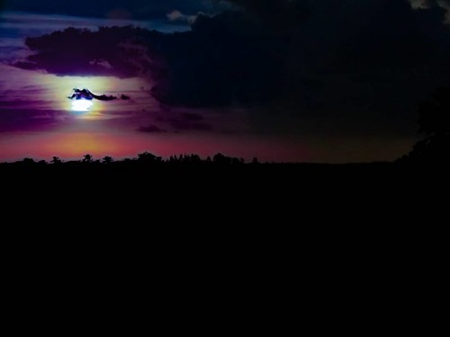 Maravilhas de Deus!🙏 #meuolharemfotos #ednelsonfotografia #edjss #paisagem #landscape #fotografia #foto #photo #amofotografar #photography #natureza #nature #meioambiente #enviroment #naturephotography #fotodepaisagem #céu #sky #nascerdosol #landscap