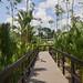 17-04-17_BotanicGarden_P1020817