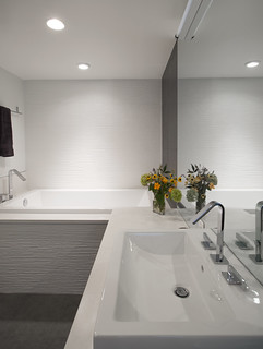 foggy bottom master bath
