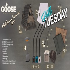 Goose holliday house gacha
