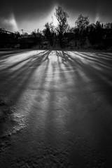 Sundog and Shadows