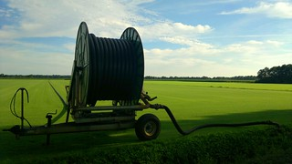 An irrigation spool