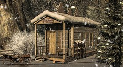 Ole Shelter
