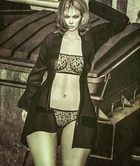 Diana Blazer