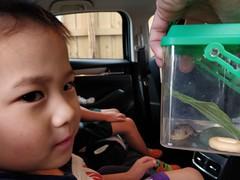Liam wanted to bring a live slug to kinder