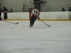Red Wings hockey game