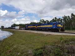 2/20/19 Seminole Gulf 591 leads 595 and a cut of cars switching Fort Myers yard.
