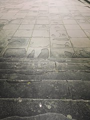 So much texture... #texture #bristol #victoriarooms #historic #city #monument #grey #tones