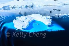 Antarctica-111125-1092