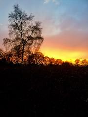 Tonight's sunset (Taken with my phone)