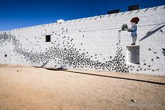 4594 Phoenix Wall Muralsrev1crp1