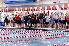 2018-19 MHS Boys Swim and Dive Sectionals Swim Meet at Middleton-9549.jpg