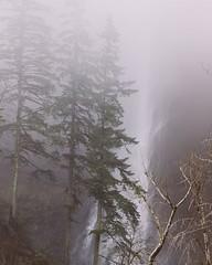 Oregon's winter weather has so many layers #MultnomahFalls #ColumbiaGorge #MultnomahCounty #Oregon #OregonExplored