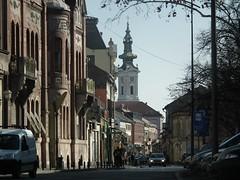 Jedna od najlepših ulica u Novom Sadu.#serbia #srbija #vojvodina #europe #photo #photoshoot #balkans